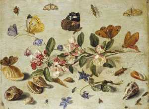 Jan Van Kessel The Elder - flores e insetos